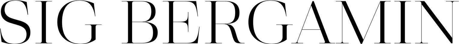 Logo Sig Bergamin